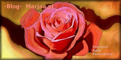 roos marjaa